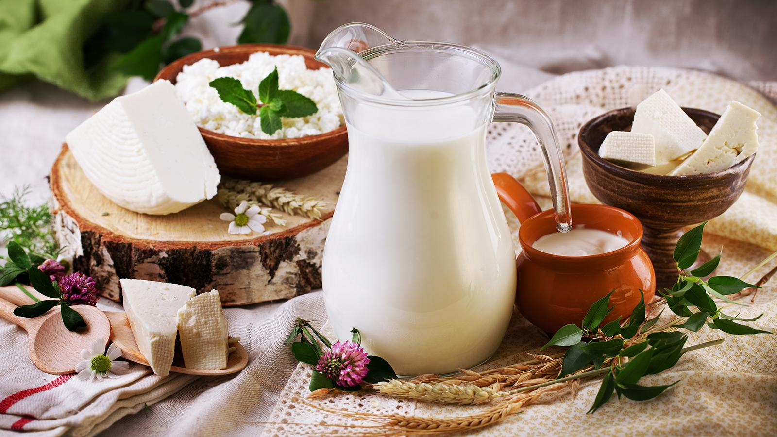 AL JUNEIDI Dairy and Food Products Itd